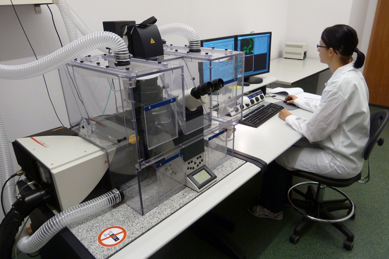 Experimental Facility Laboratory Of Modeling In Biology